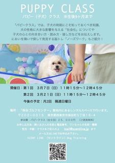 PuppyNose3月 2.jpg